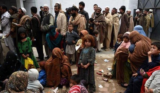 UN says record half a million Afghans displaced by war