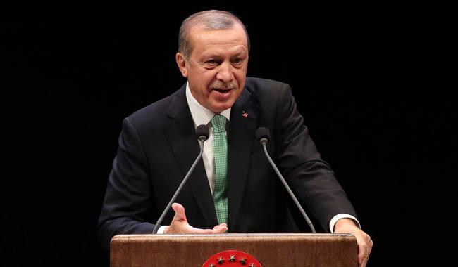 Do more to boost ailing lira, Erdogan urges Turks