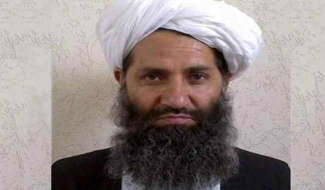 Taliban chief urges Afghans to plant more trees