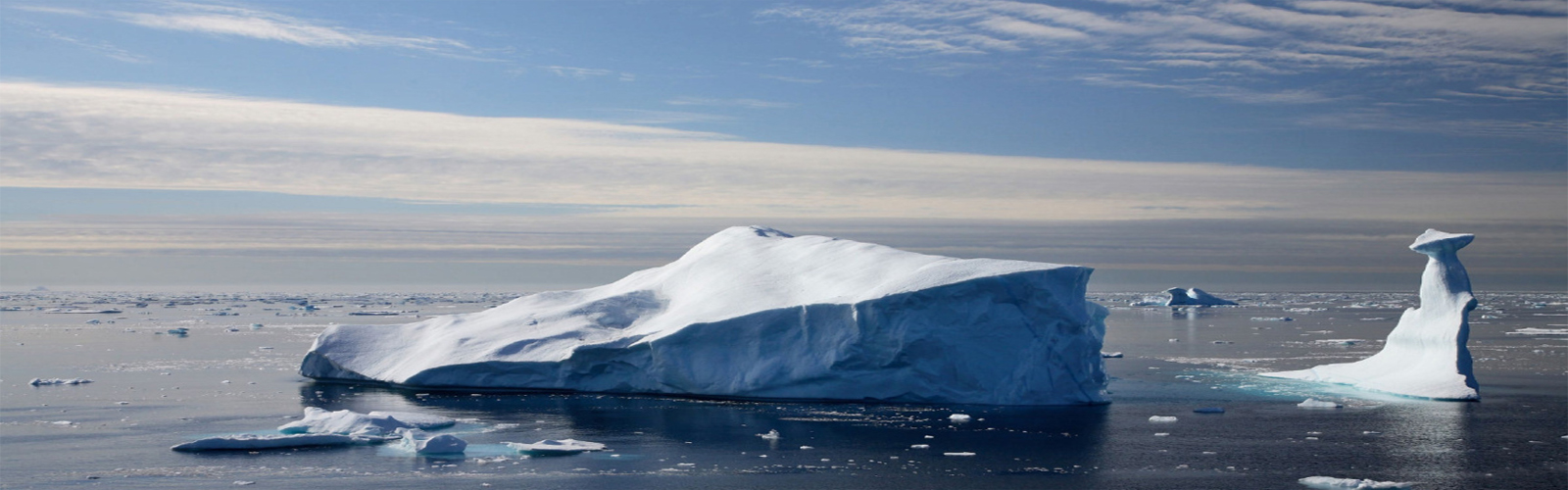 Thinning Arctic sea ice lets in light, prompts algae bloom-study
