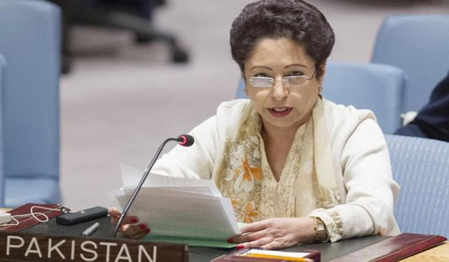 Pakistan urges US to help defuse tensions with India over Kashmir