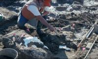 California fossils, stone tools may rewrite New World human history