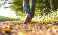 Walking linked to improved brain function