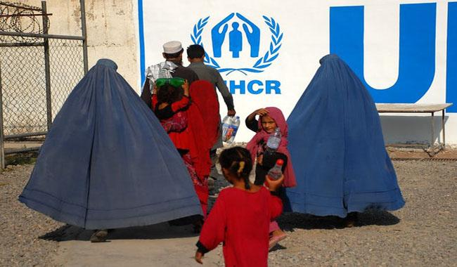 1.6 million Afghan refugees still in Pakistan