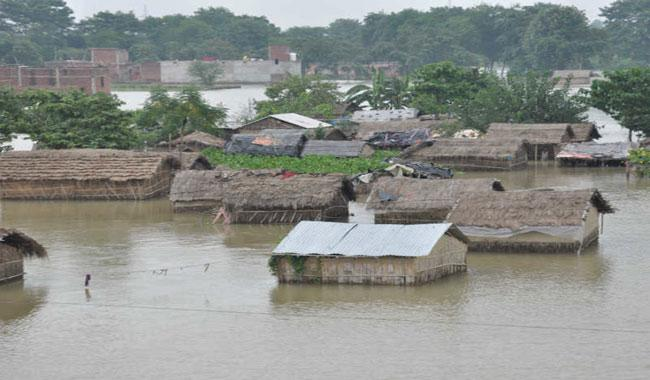 Death toll in Sierra Leone flood disaster reaches 441
