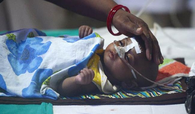 55 deaths in Nashik newborn care unit in August