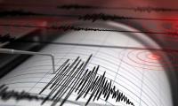 Strong 6.2 magnitude quake shakes central Mexico: quake monitors