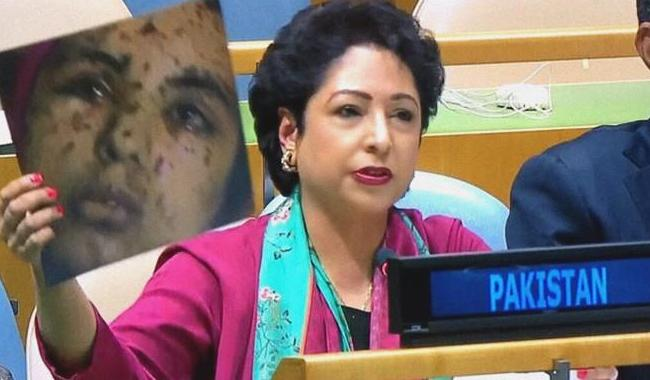 India is mother of terrorism in South Asia: Pakistan