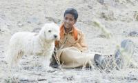 Pakistani film 'Saawan' among 2017 foreign-language Oscar submission list