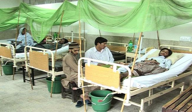 Dengue alert in Punjab rises to 512