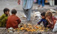 World Food Day – Eliminating hunger for a healthier Pakistan