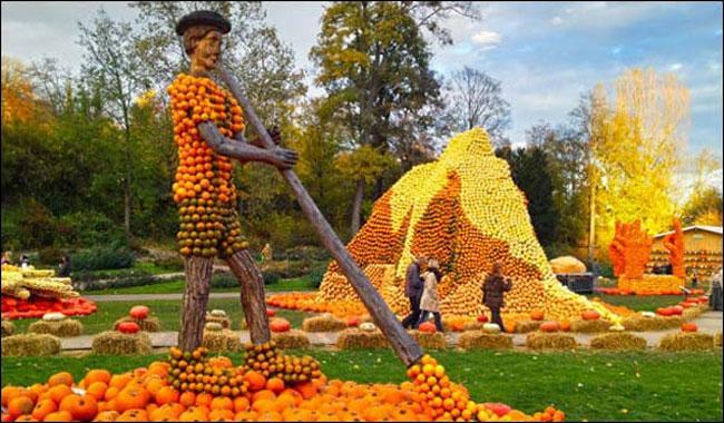Biggest Pumpkin festival in Germany