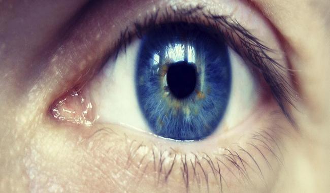 Novartis sees bright future for eye unit