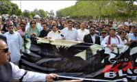 Sindh govt organizes rally to express solidarity with Kashmiris