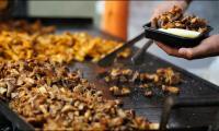 Inside Peru's Food Festival