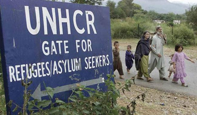 Pakistan world' s largest host of refugees: UNHCR
