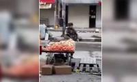 以色列突击队抓获了巴勒斯坦供应商偷红的水果
