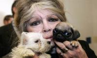 Brigitte Bardot, announcing book, slams Macron on animal rights