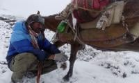 Ancient Silk Road barter trade continues across High Asia´s peaks