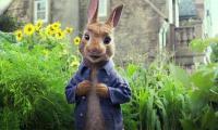 Animated film 'Peter Rabbit' to hit cinemas today