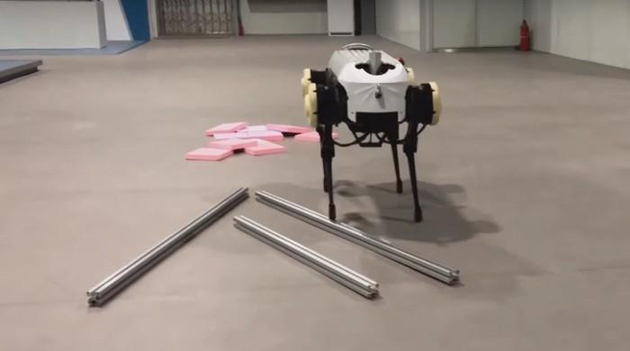 Chinese scientists unveil four-legged robot dog