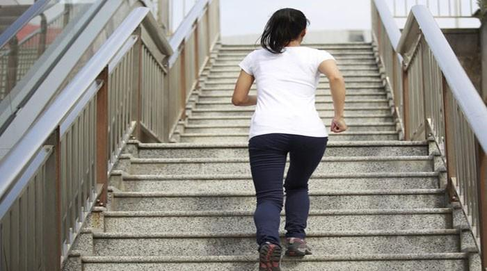 Climbing stairs linked to lower blood pressure: study