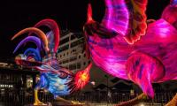 Chinese New Year blooms its lanterns in Sydney as well