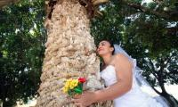 Mexican women marry trees out of love in mass wedding