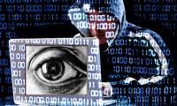 Internet overseers weigh website owner privacy