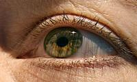 Stem cell eye treatment safe, restores some vision: study