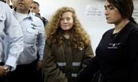 Palestinian teen in 'slap video' jailed eight months in plea deal