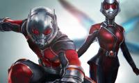 A sequel to Ant Man soon to hit screens