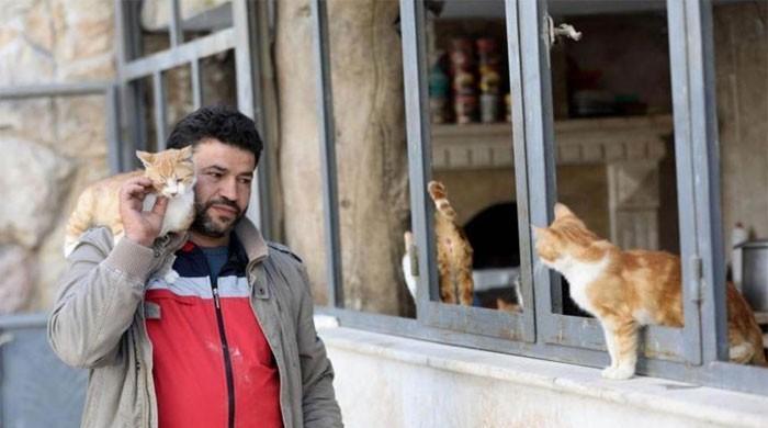 ZUT ! ON A OUBLIÉ LA SYRIE ! - Page 32 L_325581_110828_updates