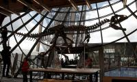 Mystery dinosaur skeleton sells for over $2 mln at Paris auction