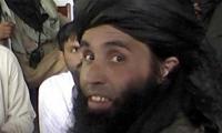 TTP seeks fate of leader after US strike in Afghanistan