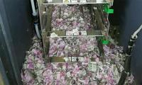 'Surgical strike by rats', mice destroyed Rs 1.2 million at Indian ATM machine