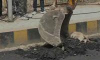 Social media fumes as hot coal tar is surged over sleeping dog in India