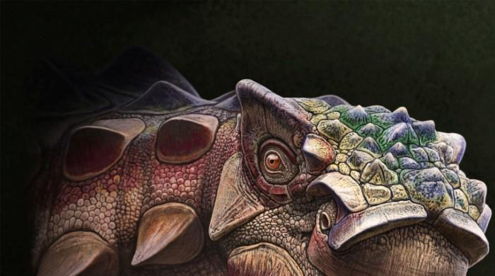 Spiky Utah dinosaur had more than 'a face only a mother could love'