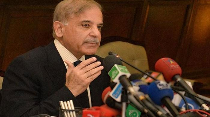 PML-N to develop Peshawar like Lahore if voted to power, claims Shehbaz Sharif