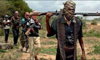 Niger army says 10 Boko Haram ´terrorists´ killed