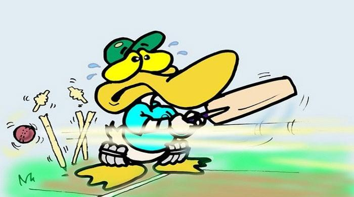 How 'duck' comes in cricket field