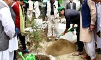 Second phase of plantation drive in January: Amin Aslam