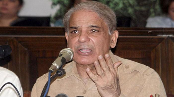Shehbaz Sharif: 'NAB asked me to become approver against Kh Asif'