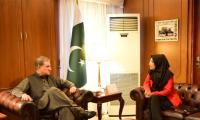 FM Qureshi meets Dr Fauzia Siddiqui, assures support for Aafia's repatriation