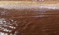 Heavy rains unearth Iraqi mines in Kuwaiti desert