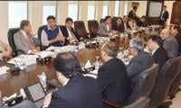 Asad Umar reviews progress on FATF action plan