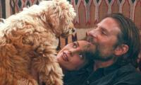 Bradley Cooper named 'best director' for directing his dog in A Star is Born
