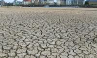 Germany records hottest year in a century