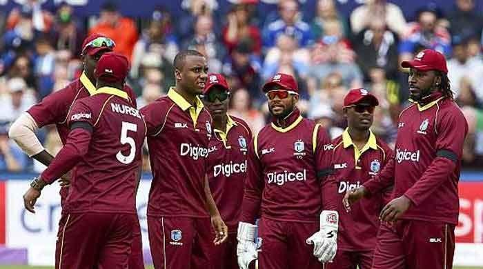 Icc World Cup 2019 West Indies Cricket Squad Statistics