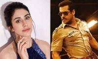 Warina Hussain to shake a leg with Salman Khan in Dabangg 3